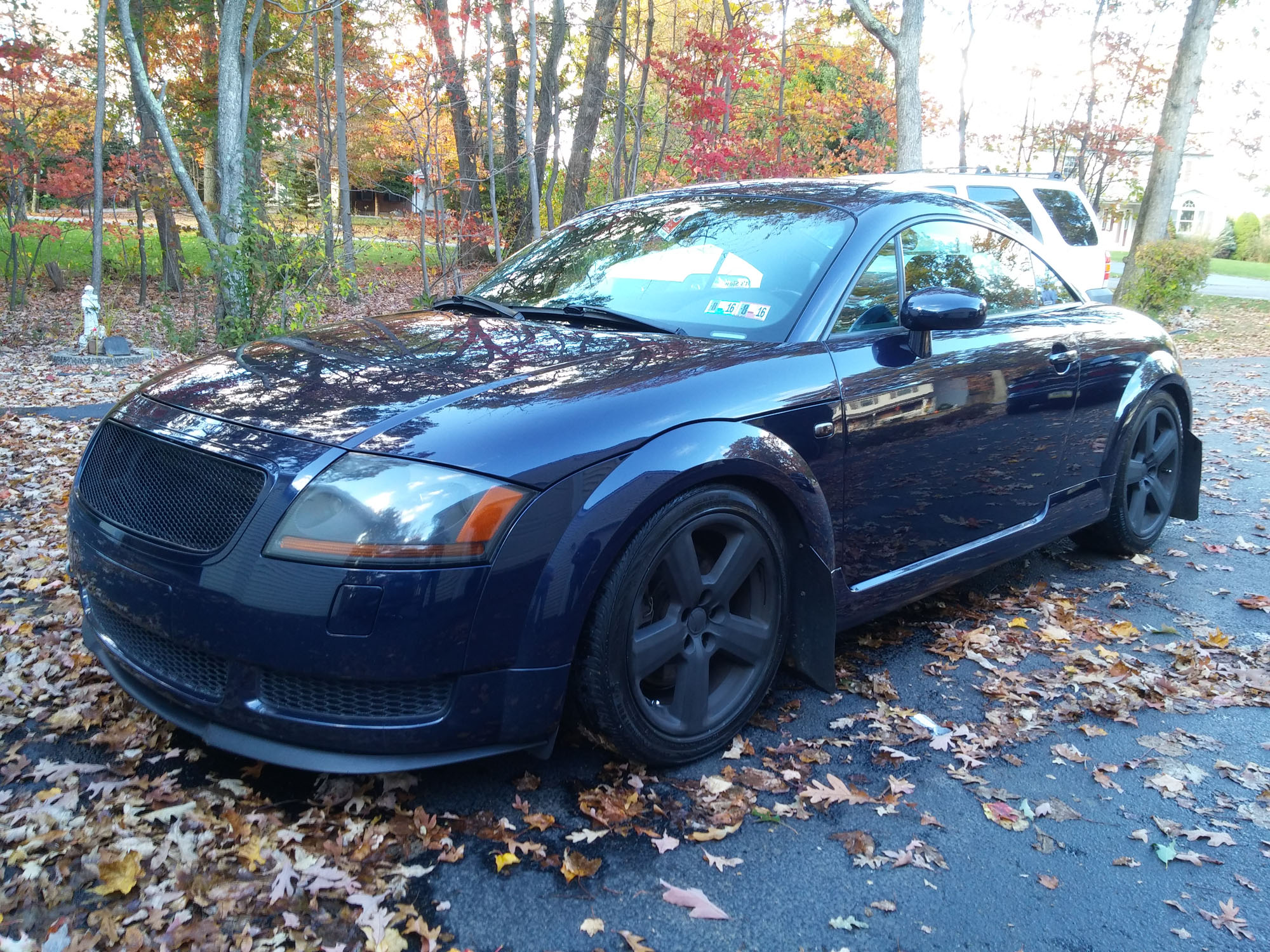Dark Blue Audi TT