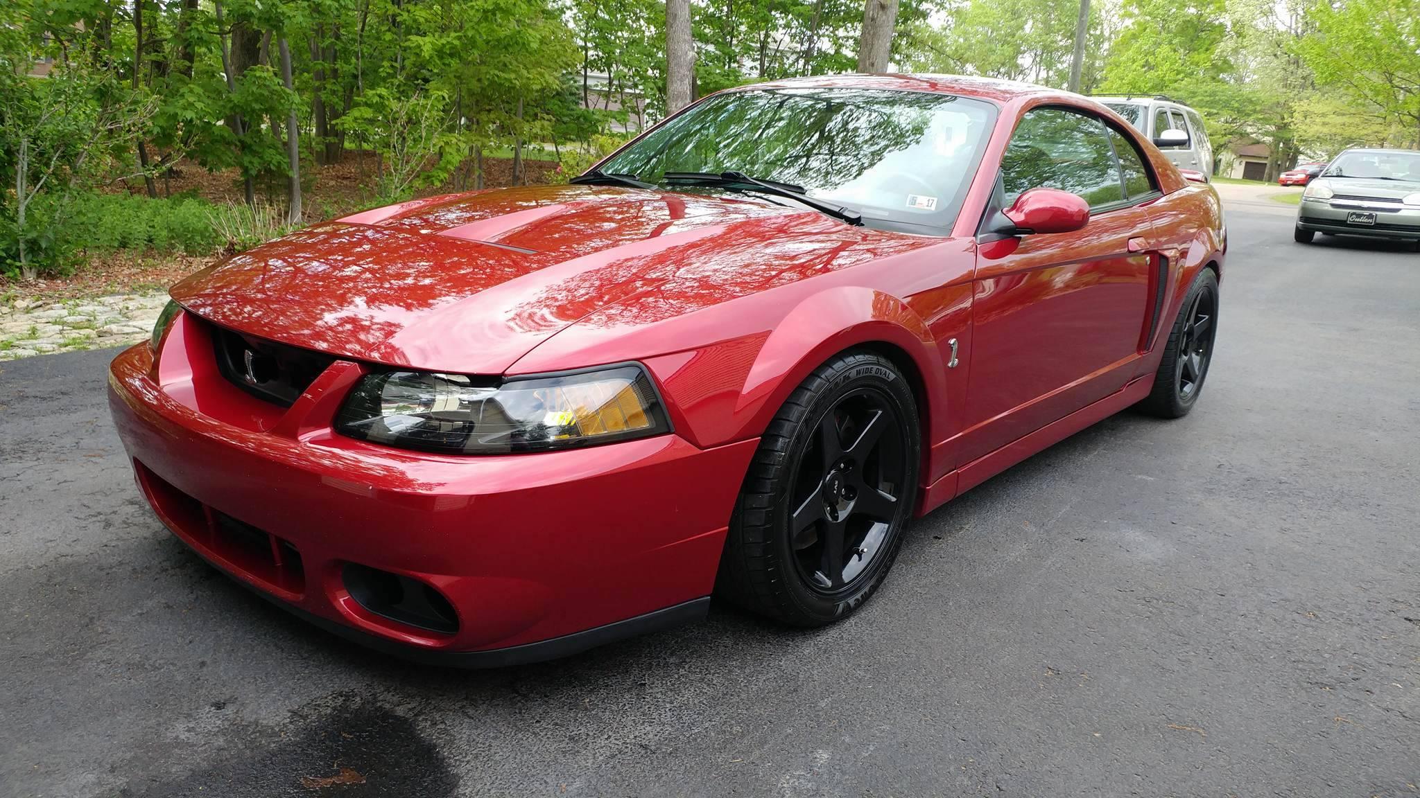 Red Mustang Cobra